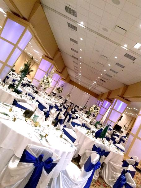 Elegant Creations Linen And Chair Cover Rentals